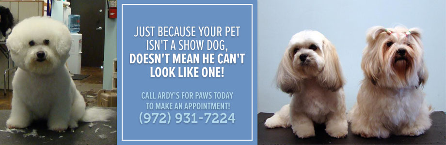 Dog Grooming Dallas TX